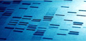 Genetic Genealogy 101