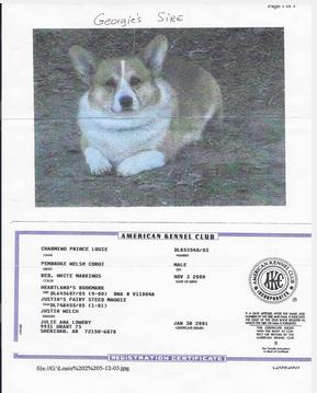 2003 Charming Prince Louie